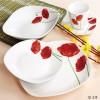 20pcs Porcelain Square Dinner Set